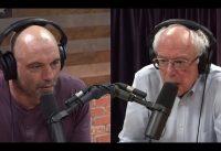 """Joe Rogan: """"Voy a votar por BERNIE SANDERS"""".-"""